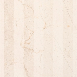 Декор Antico beige decor 02 250х750